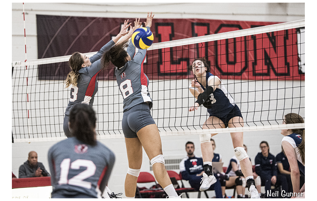 Volleyball image 1