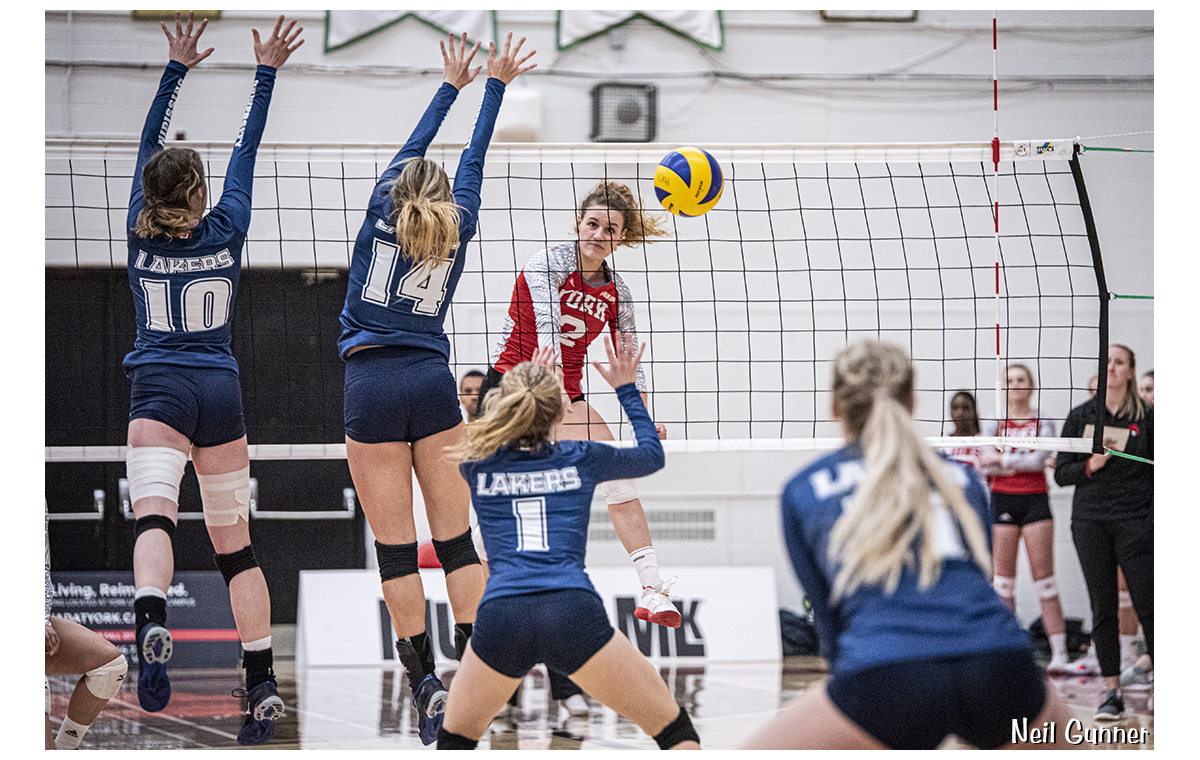 Volleyball image 10