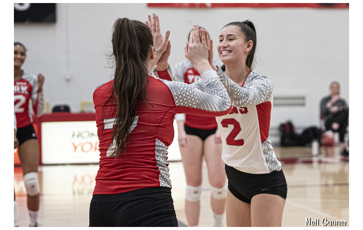 Volleyball image 11