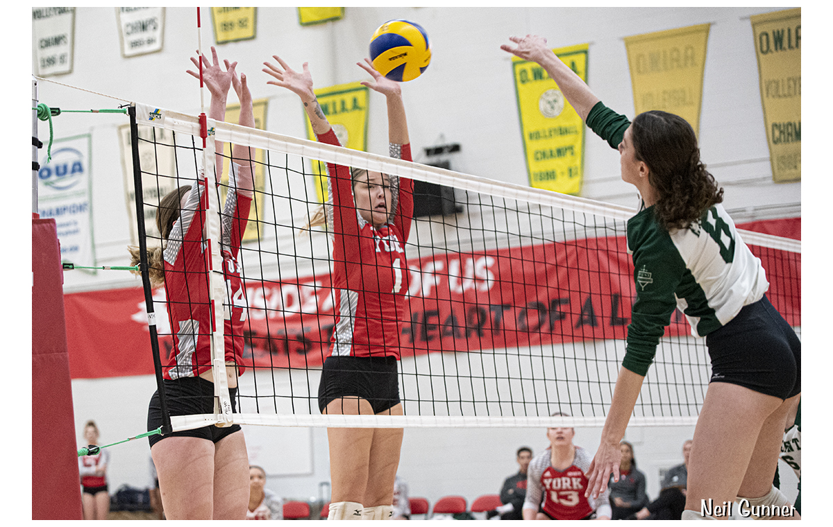 Volleyball image 12