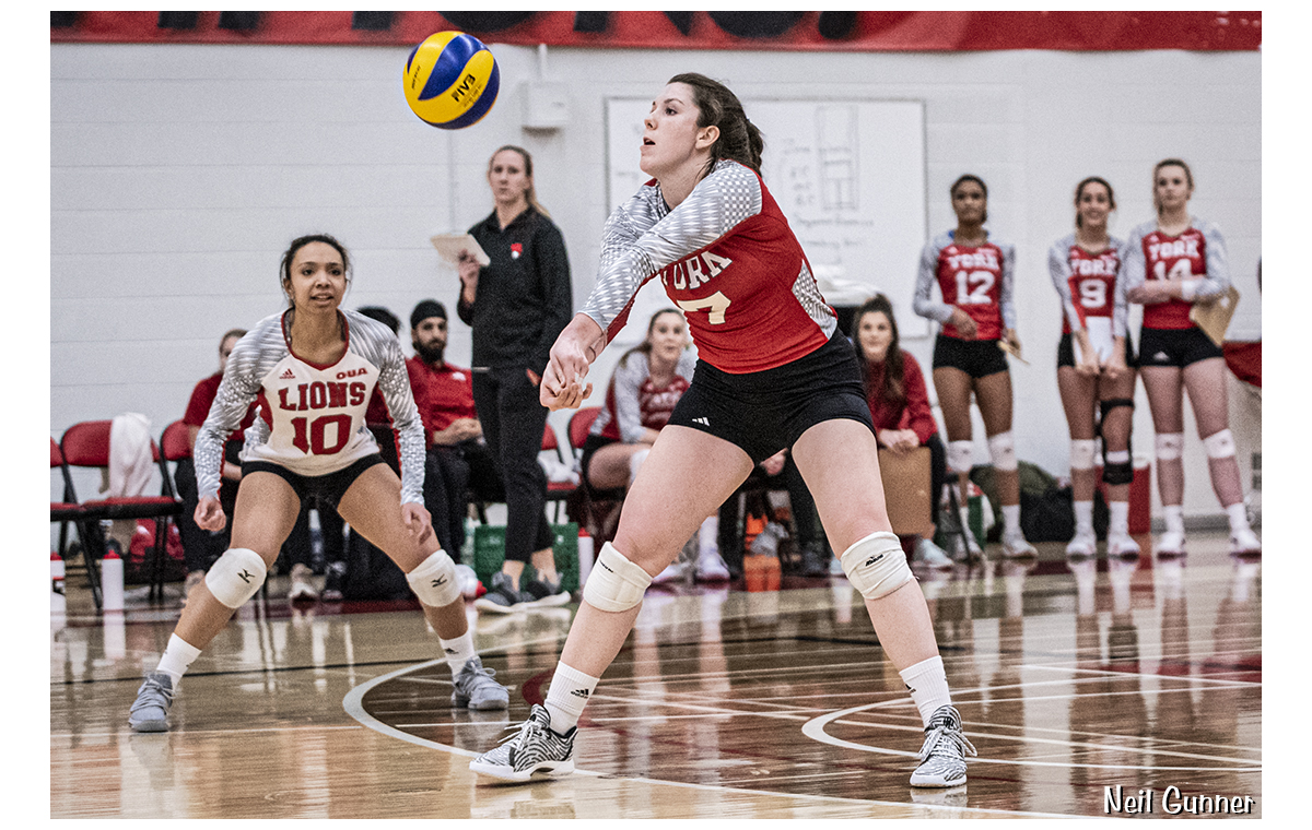 Volleyball image 13