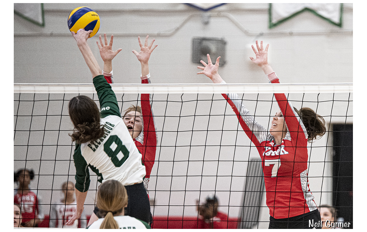 Volleyball image 14