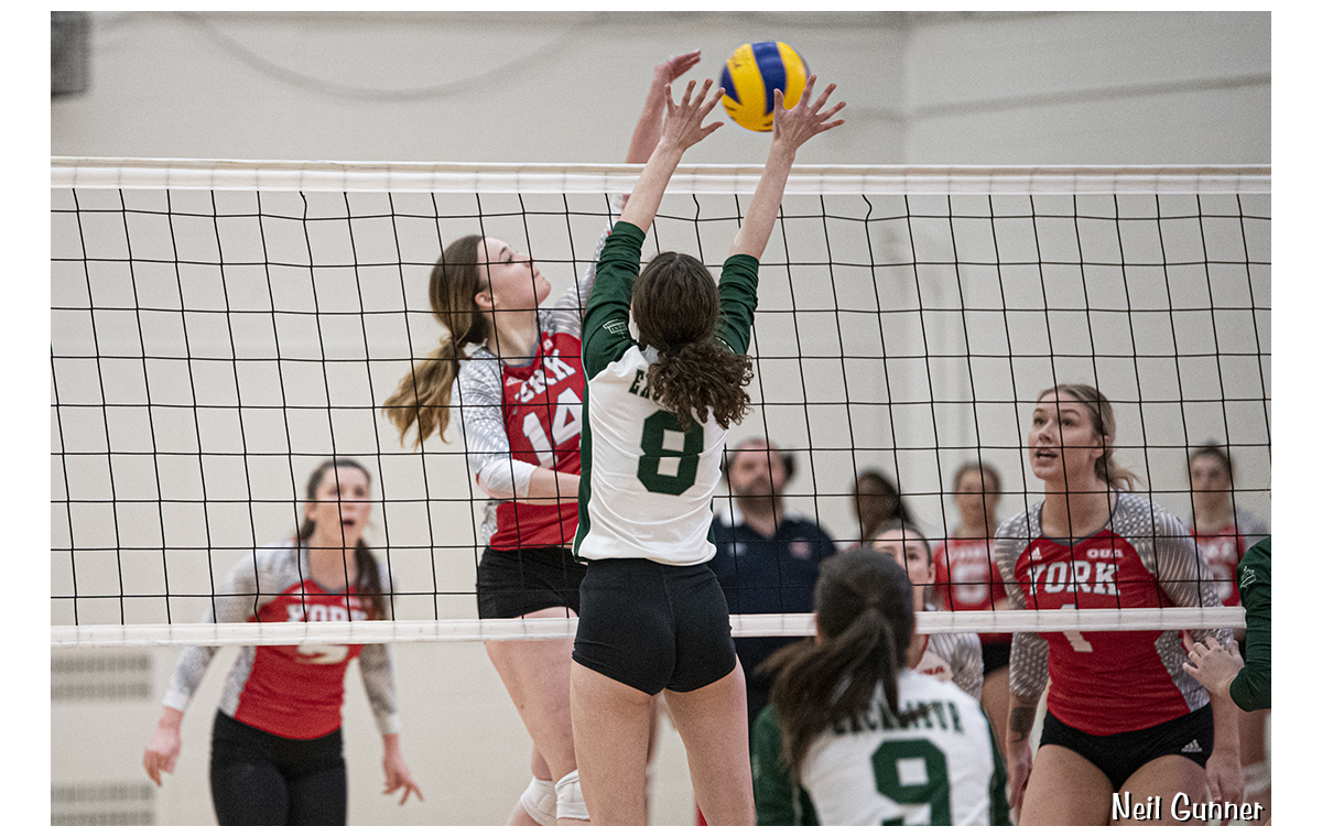 Volleyball image 16