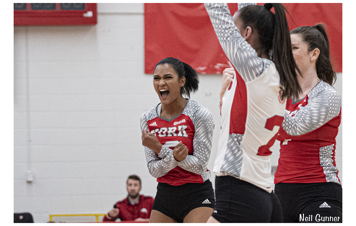 Volleyball image 17