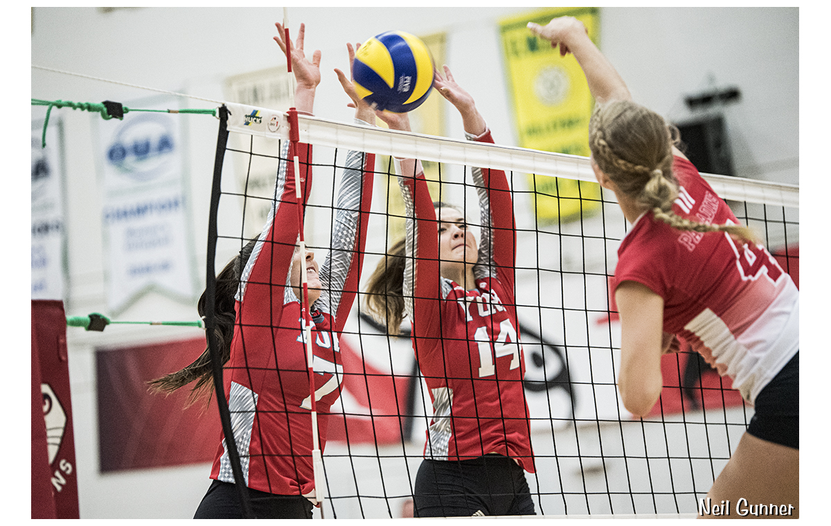 Volleyball image 18