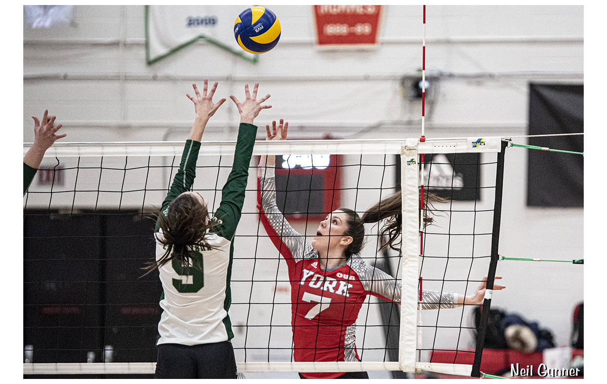 Volleyball image 19