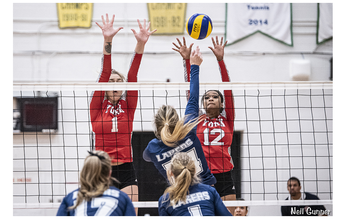 Volleyball image 2