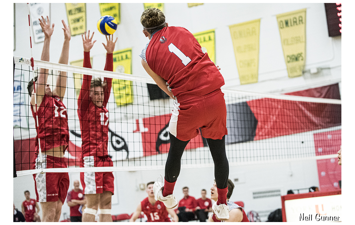 Volleyball image 3