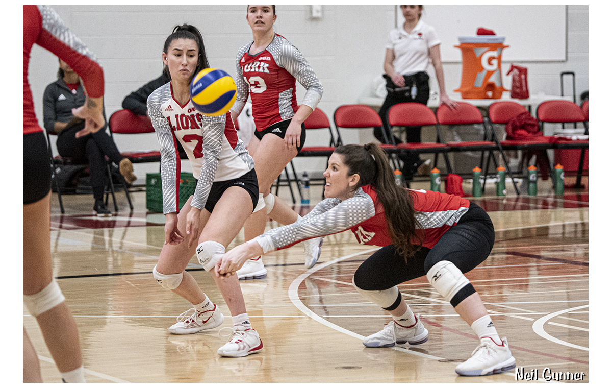 Volleyball image 4