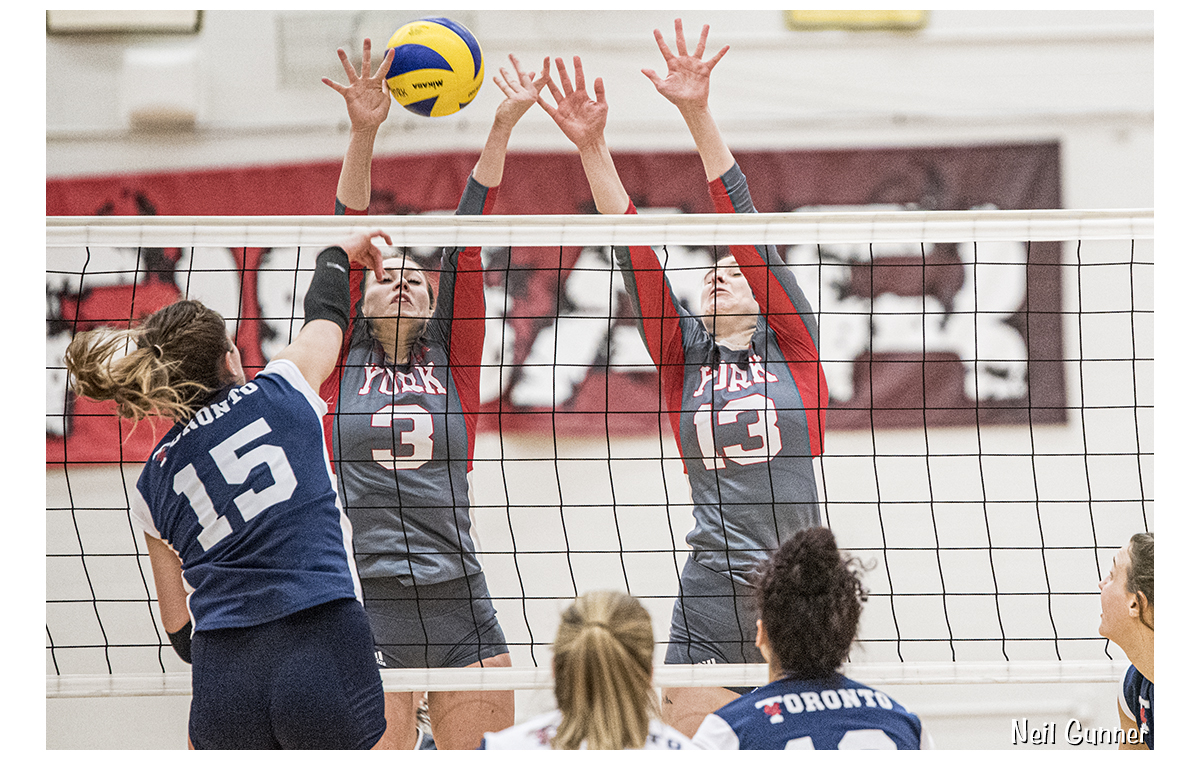 Volleyball image 6