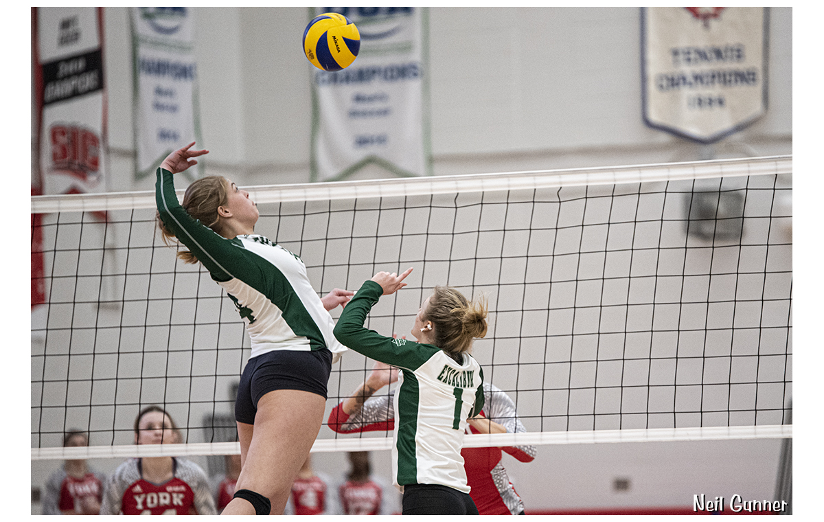 Volleyball image 7