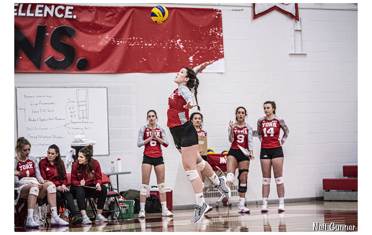 Volleyball image 8