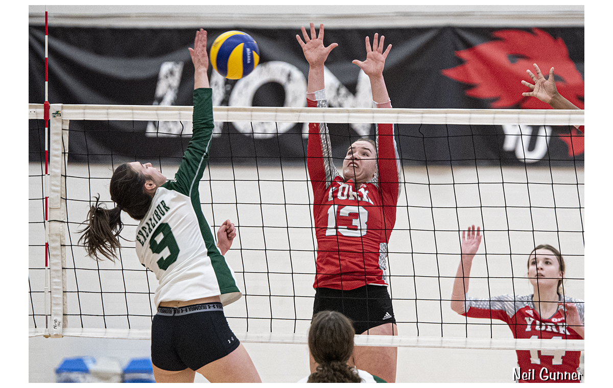 Volleyball image 9